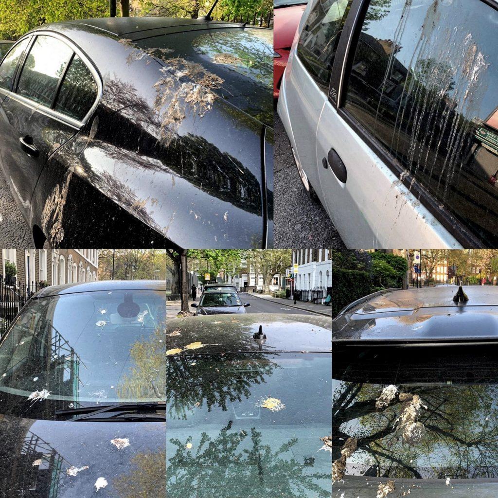 """เทคนิครถยนต์ : ฟอร์ด คิดค้น """"ขี้นกเทียม"""" เพื่อทดสอบการปกป้องสีรถ"""